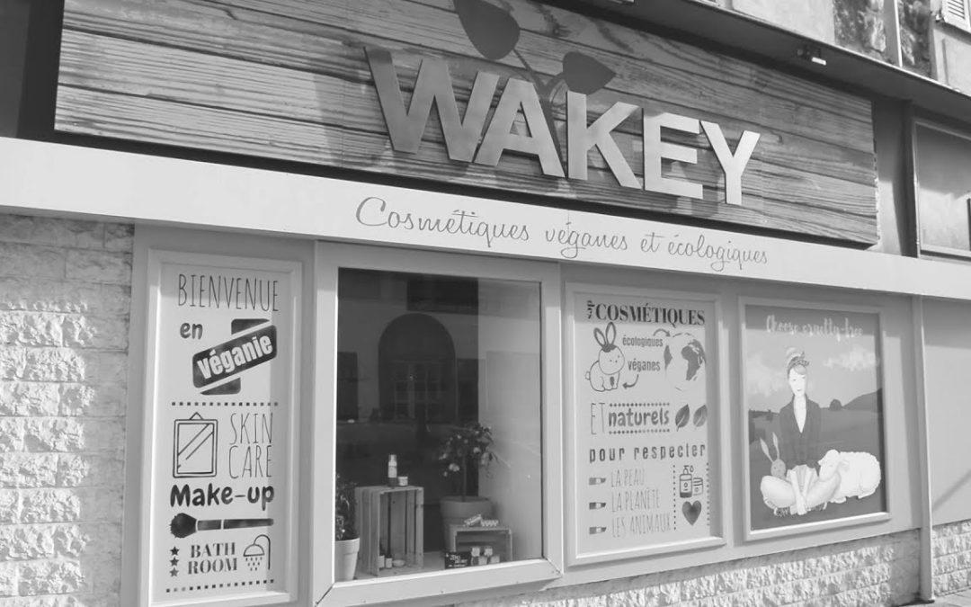 Wakey Story
