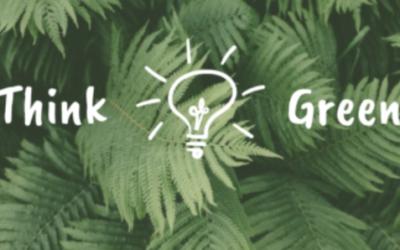 La pratique du greenwashing